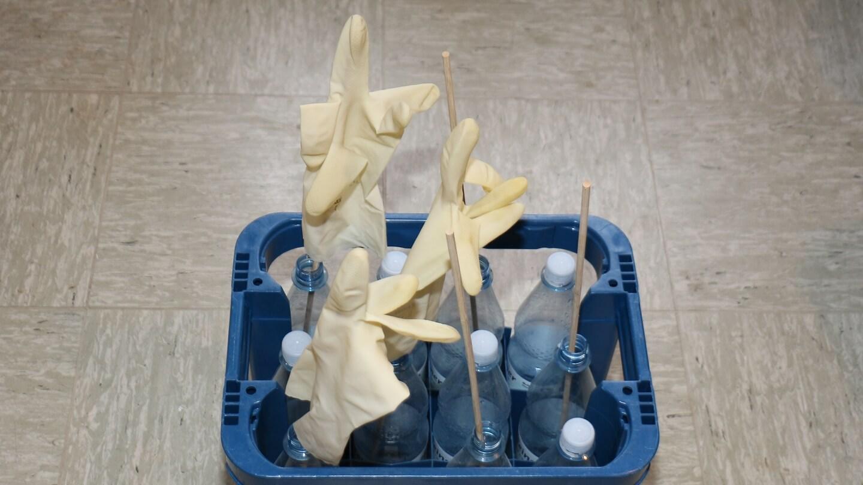 Händewaschen für die Hygiene und rissige Haut riskieren? Spülhandschuhe schützen!