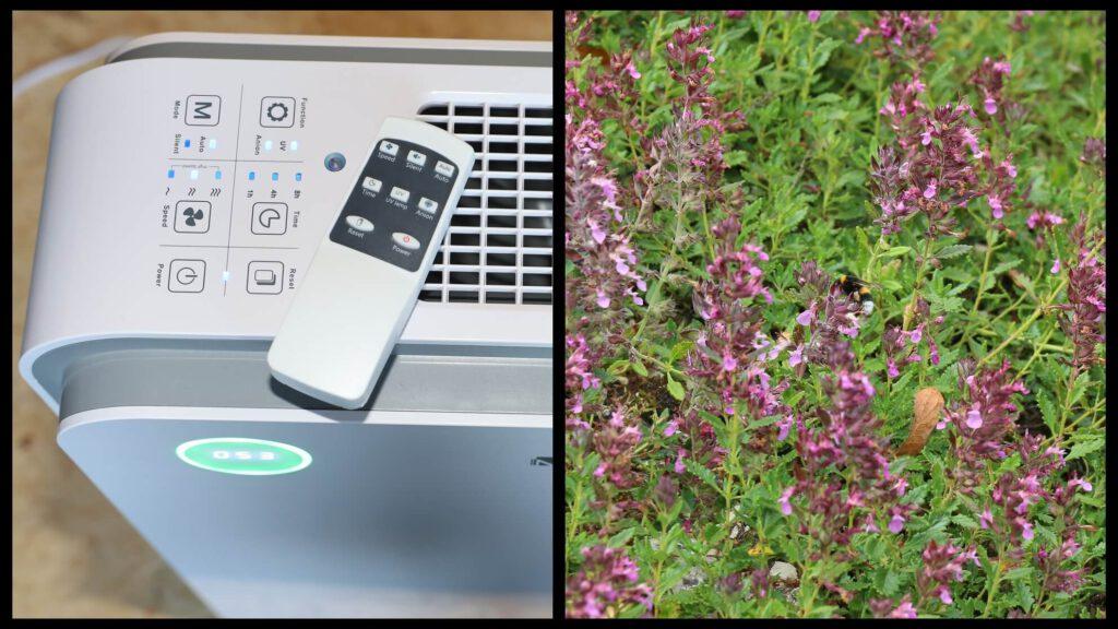 Links der HEPA Luftreiniger, rechts die Blumenwiese, welche Pollenallergie auslösen kann