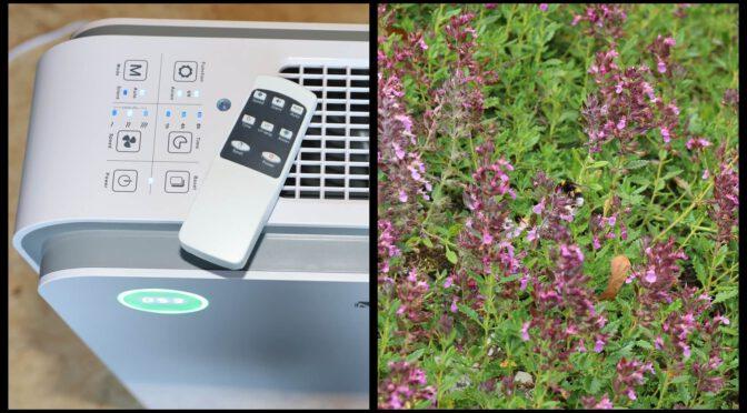 Luftreiniger für Allergiker – Heuschnupfen lindern